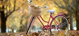 كيف تعلم ابنك ركوب الدراجة