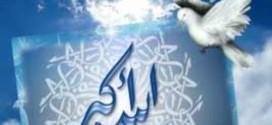 الله أكبر قولا لا عملا