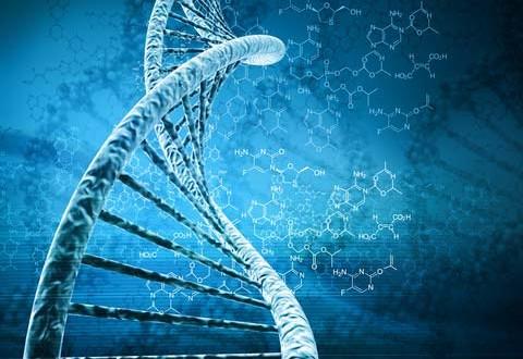 عالم الأبحاث والدراسات العلمية