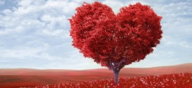 الحب في حياة النبي