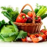 ProteinQA-Vegan